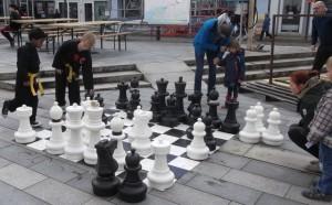 Stort-skakbræt
